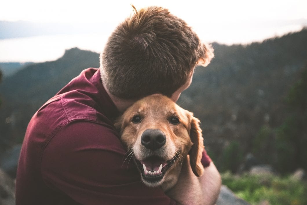 Can Pets Make You Happy?